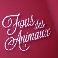 Fous des animaux